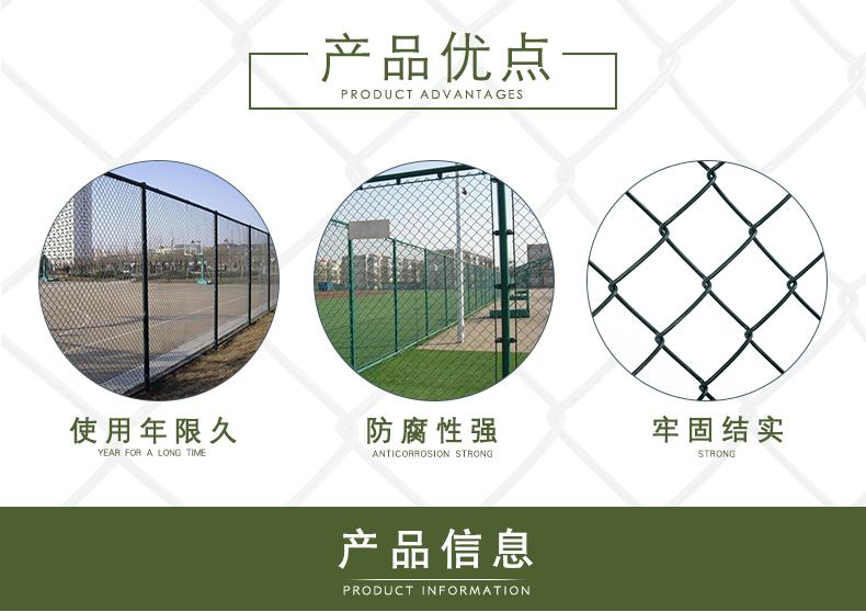 学校篮球场防护网